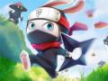 Hry Ninja Rabbit